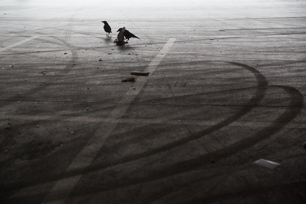 ©Jasper Léonard